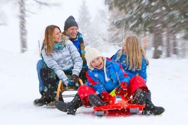 отнять зимние каникулы
